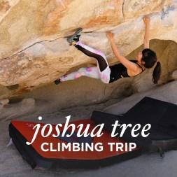 Joshua Tree Climbing Trip with Bota Box