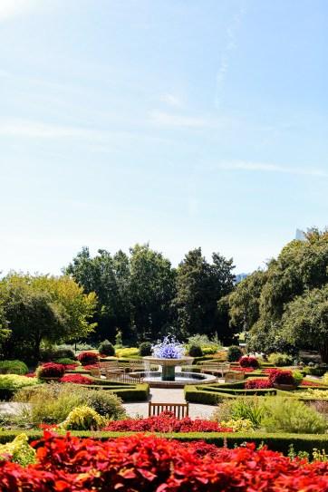 Chihuly Exhibit Atlanta Botanical Garden // localadventurer.com