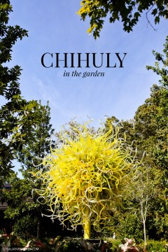 Dale Chihuly is a world renowned artist and one of his exhibits is at the Atlanta Botanical Garden // localadventurer.com