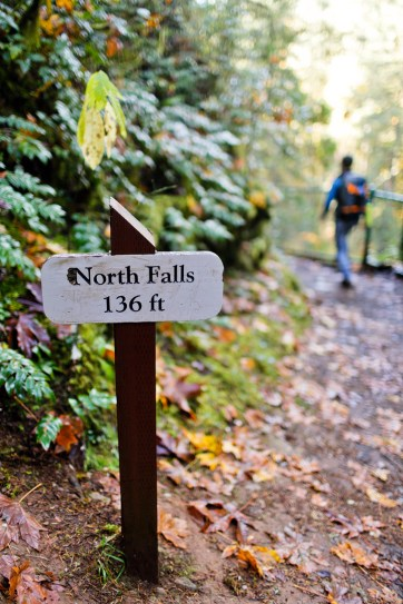 Oregon Waterfall Hikes // localadventurer.com
