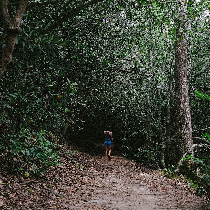 Trail run at Bent Creek (101 Things to Do in Asheville NC) // localadventurer.com