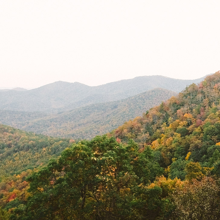 Leaf peep along the Blue Ridge Parkway (101 Things to Do in Asheville NC) // localadventurer.com