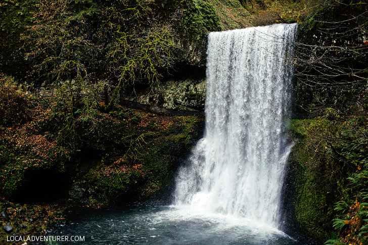 Lower South Falls - Trail of Ten Falls - Silver Falls State Park Oregon // localadventurer.com