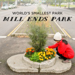 The Smallest Park in the World – Mill Ends Park Portland Oregon