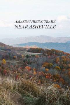 Here is the best of Asheville hiking with distance, difficulty, and trailhead information. // localadventurer.com