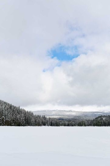 Snowshoeing Trillium Lake - If you're new to snowshoeing, you need to check out Trillium Lake. You can go cross country skiing to get to Trillium Lake. // localadventurer.com