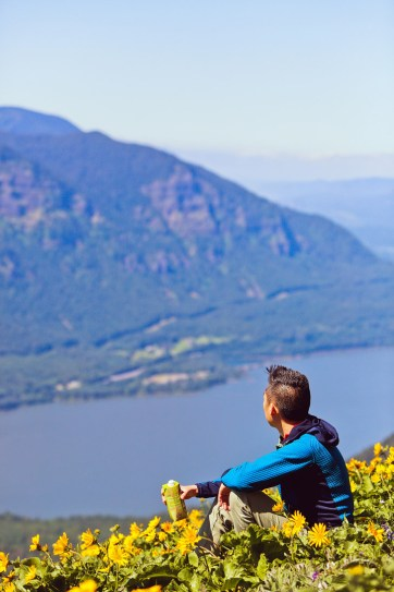 Dog Mountain Wildflowers, Columbia River Gorge, Washington + Best Wildflower Hikes in the Pacific Northwest // localadventurer.com