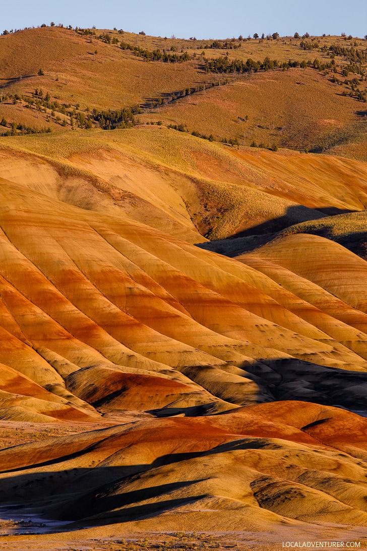 Everything You Need to Know About the Painted Hills - One of the 7 Wonders of Oregon // localadventurer.com