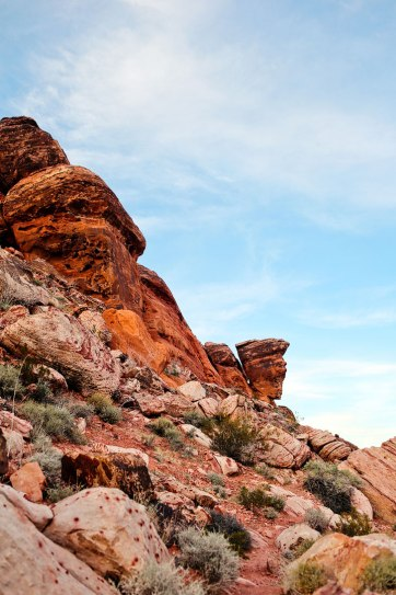 Red Rock Canyon National Conservation Area + 15 Most Popular Day Trips from Las Vegas // localadventurer.com