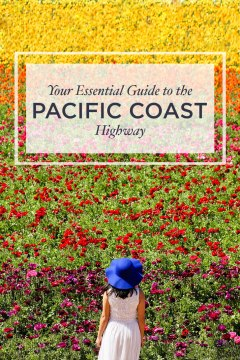 Your Essential Guide to the California Pacific Coast Highway - Places You Must Visit along Hwy 1 - A San Francisco to San Diego Road Trip and Beyond // localadventurer.com