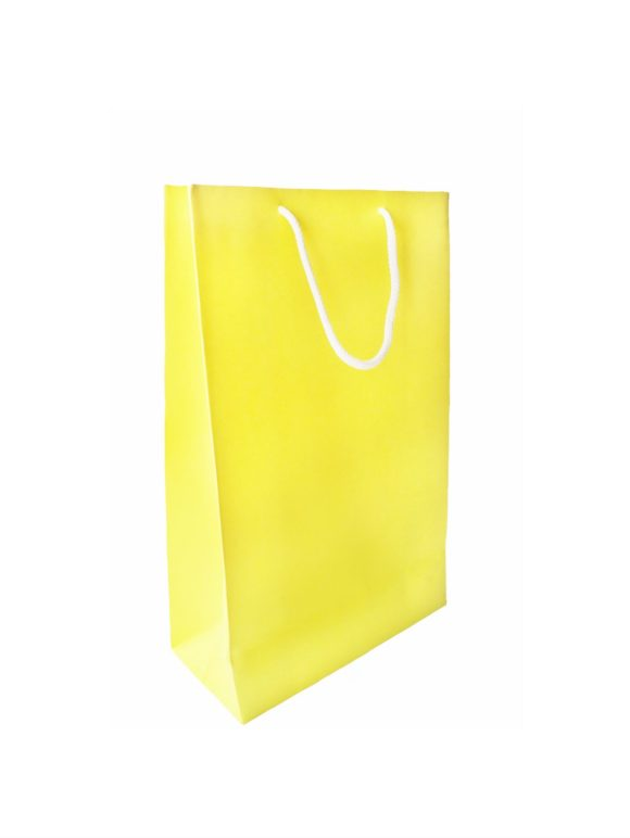 Brilliant Yellow Paper Bag