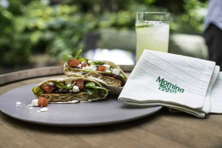 MorningStar Farms Pita_Burger