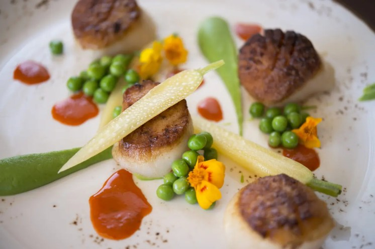 BBR_Waterline Scallops with peas and carrots