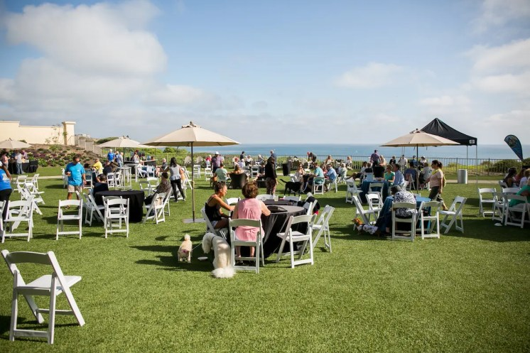 Yappy Hour Event Style_Photo Credit Pacific Dream Photography