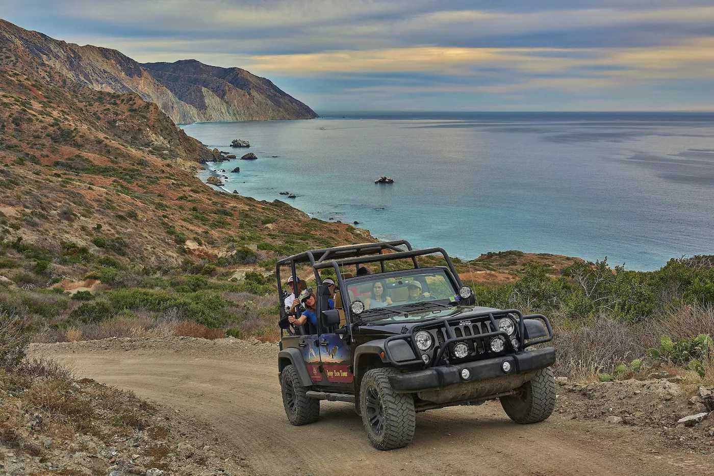 Photography Provided By: Catalina Island Conservancy