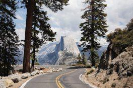 Best Yosemite Guide