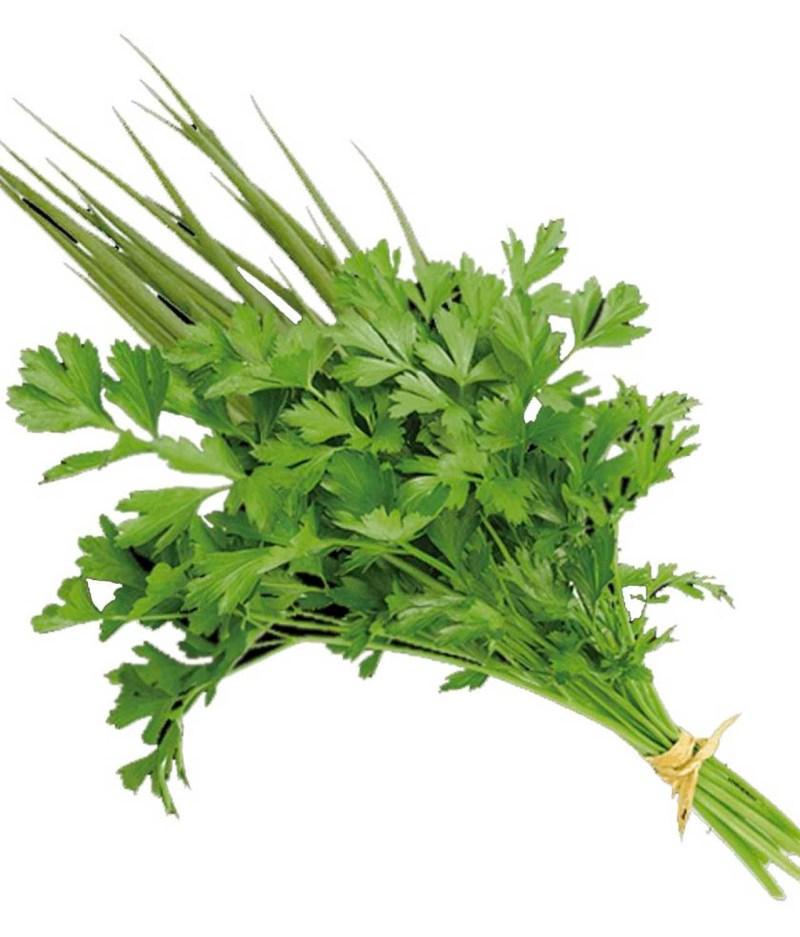 Tempero Verde Orgânico