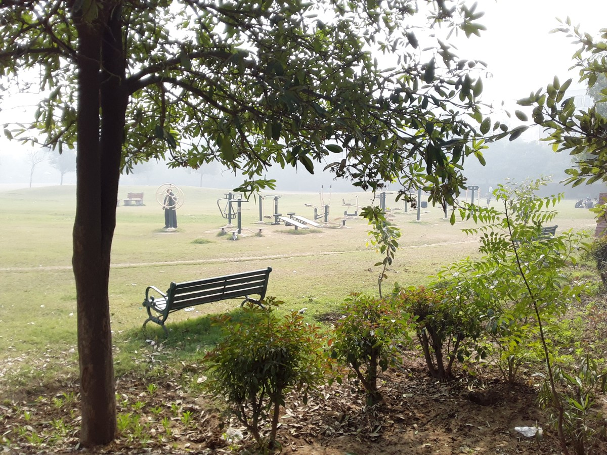 Park with Open Gym, New Delhi - 88.9%