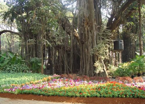 Empress Garden, Pune - 70.3%