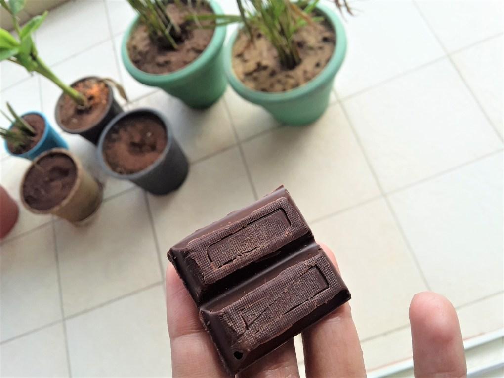 chocotarian fabelle single origin cacao dark chocolate south delhi