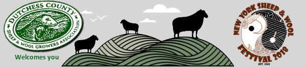 NY State Sheep Sheep And Wool Festival – LocalFiber