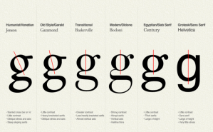 Typography Insight