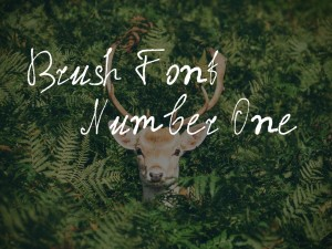 Brush Font Number One