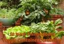 Veggie Container Gardening