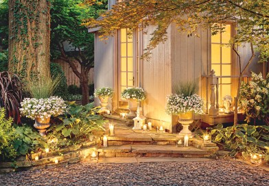Gardening Ideas: Nightscaping your garden