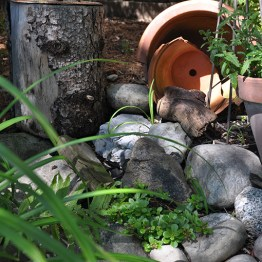 Upcycled pots in the garden.