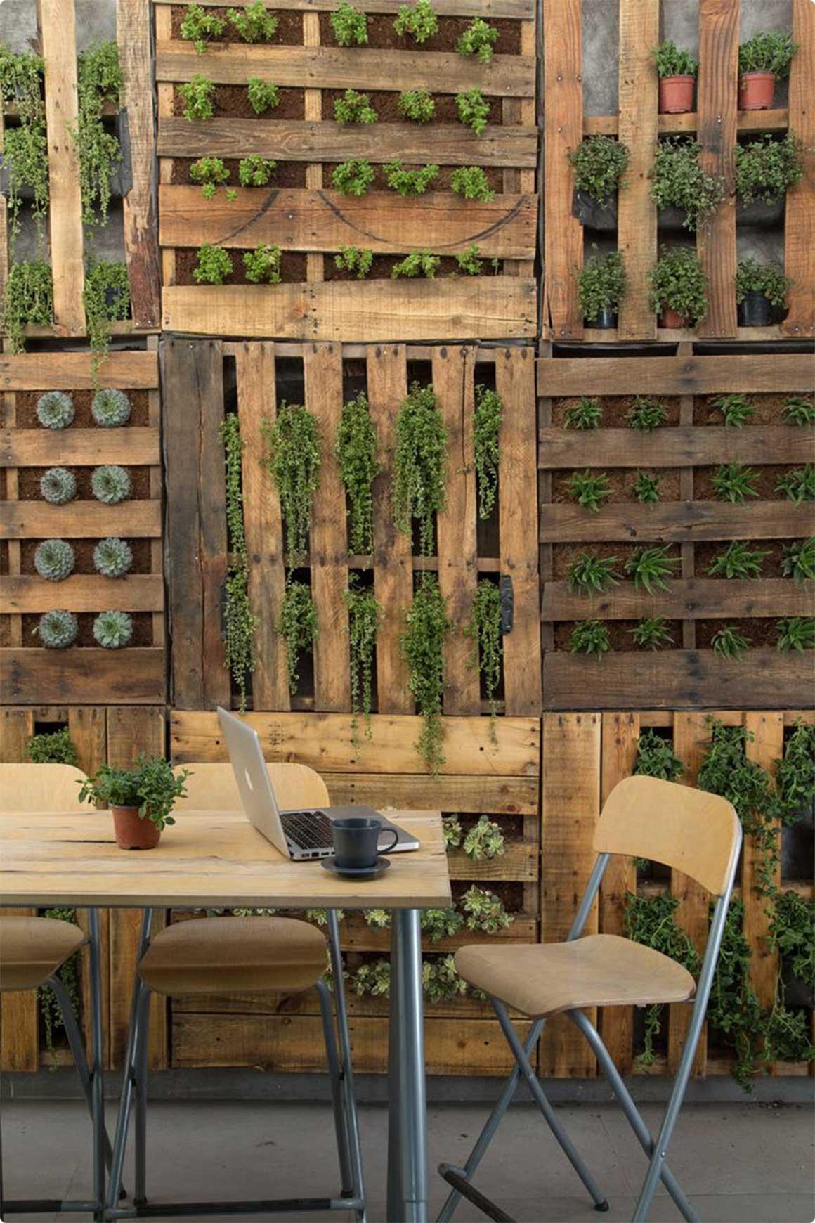 Gardening in small spaces – Your LOCAL Gardener