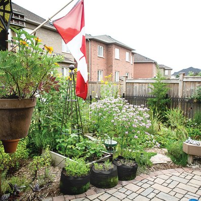Planters of herbs and vegetables can add to the beauty of the garden in a practical way.