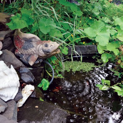 A small pond complete with goldfish gently bubbles away.