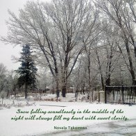 Snow falling soundlessly in the middle of the night will always fill my heart with sweet clarity. ~ Novala Takemoto