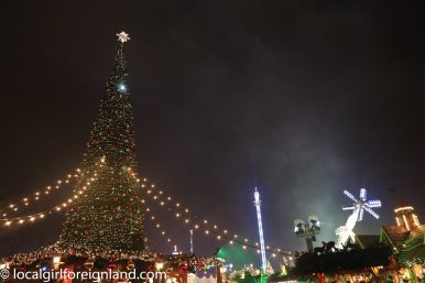 London 201512 Winter Wonderland-32