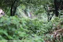 aso kumamoto japan-2913