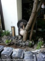kumamoto-japan-140544