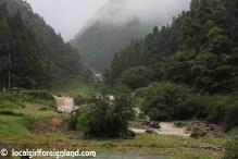 jigokudani-snow-monkey-park-yudanaka-9328