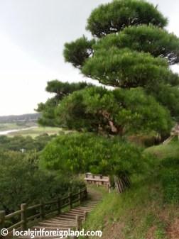 kairakuen-garden-mito-japan-165658
