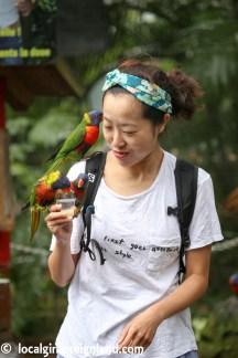 Jardin Botanique de Deshaies Guadeloupe-4249