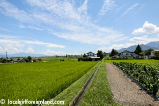 Azumino-Nagano-Hotaka-JR-japan-8911