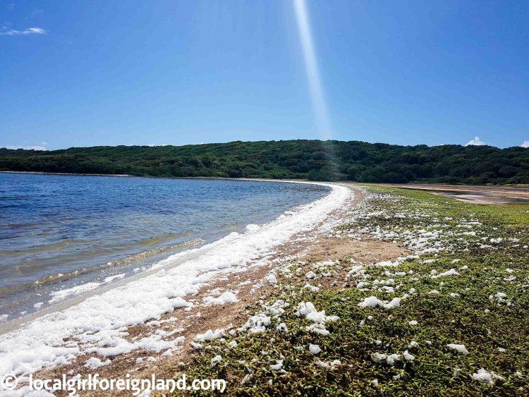 Les Salines, Pointe des chateaux hike, Guadeloupe