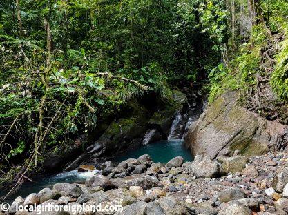 Chemin-du-Bassin-Bleu-Guadeloupe-140052