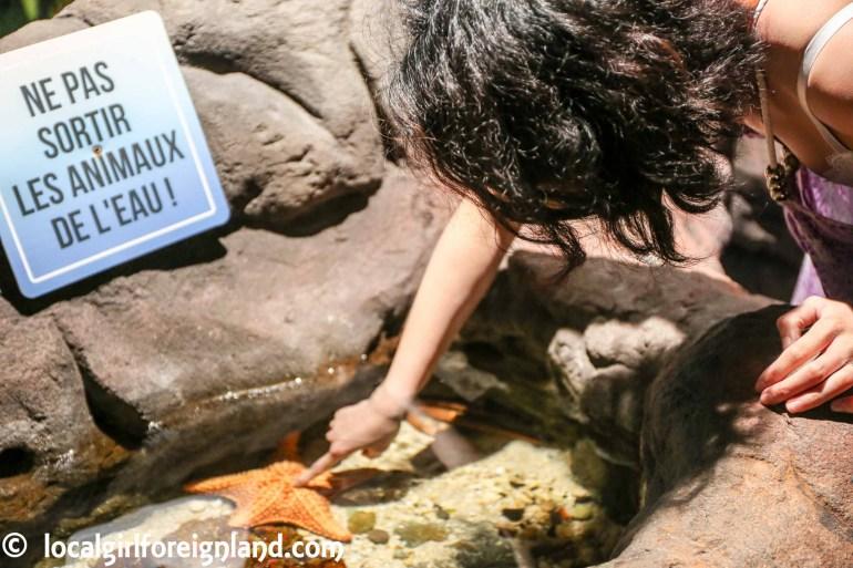 aquarium-guadeloupe-review-reopen-5341.JPG