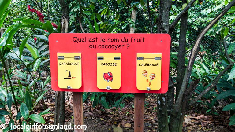 la-maison-du-cacao-guadeloupe-english-review-2217