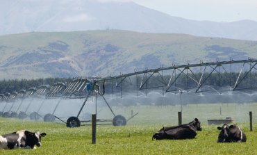 Irrigation report finds room for improvement