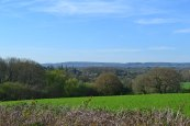 View towards greensand ridge from near Penshurst