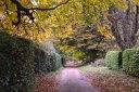 Ide Hill/Emmetts walk