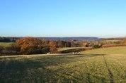 Ide Hill, winter