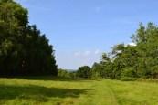 Near Hill Hoath